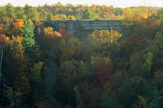 The natural bridge in Red River Gorge (photo courtesy of pixel.outragegis.com)