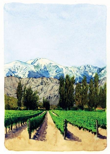cn_image_0.size.argentina-vineyard