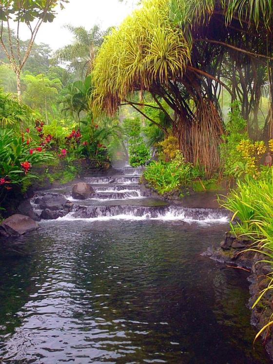 Tabacon Natural Hot Springs