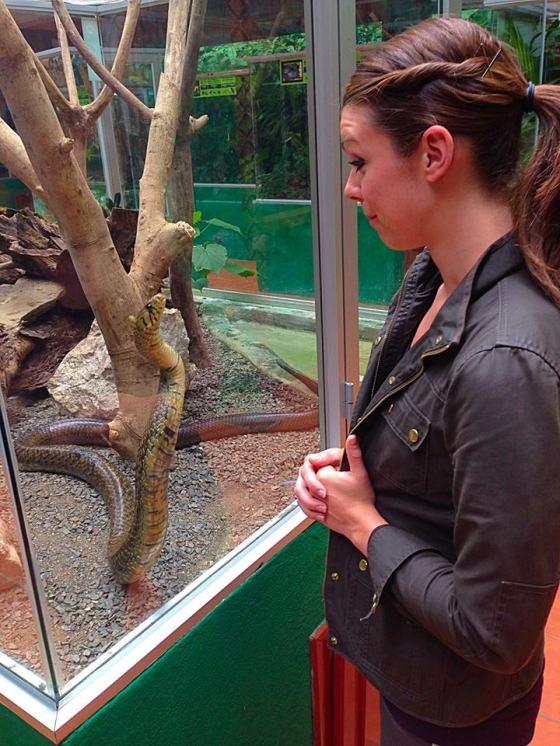 My new snake friend...