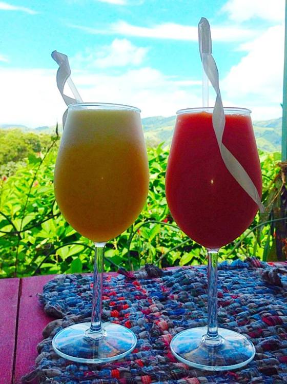Fresh juices at Toad Hall with an awesome view.